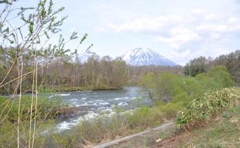 ニセコから見た羊蹄山.JPG